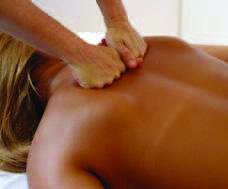 ステップ 3: 肩と首(筋神経統合)